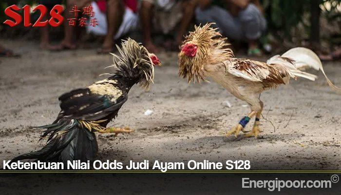 Ketentuan Nilai Odds Judi Ayam Online S128